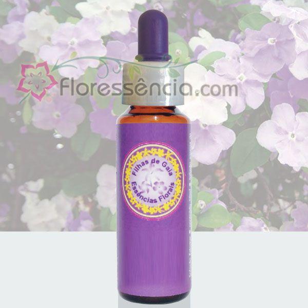 Manacá Cheiroso - 10 ml  - Floressência