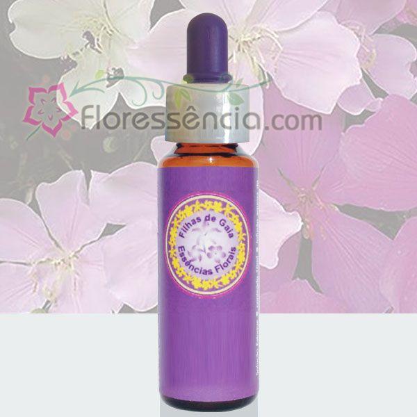 Manacá da Serra - 10 ml  - Floressência