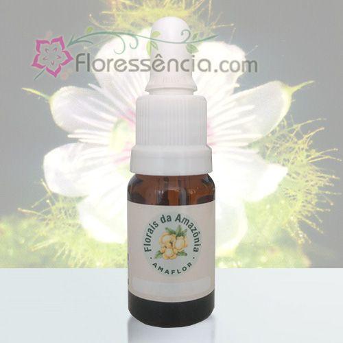 Maracujá Silvestre - 10 ml  - Floressência