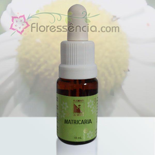 Matricaria - 10 ml  - Floressência