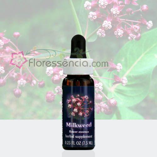 Milkweed - 7,5 ml  - Floressência