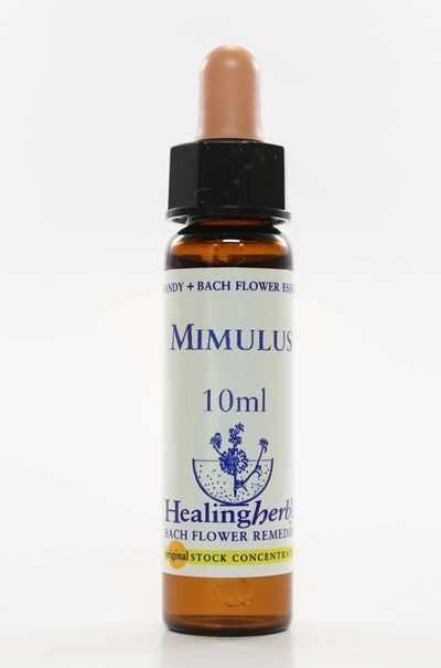 Mimulus - 10 ml  - Floressência