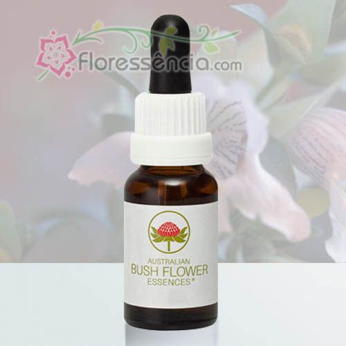 Mint Bush - 15 ml  - Floressência