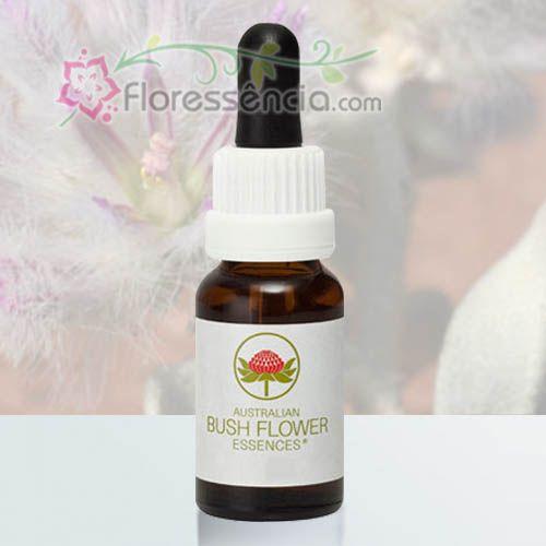 Mulla Mulla - 15 ml  - Floressência