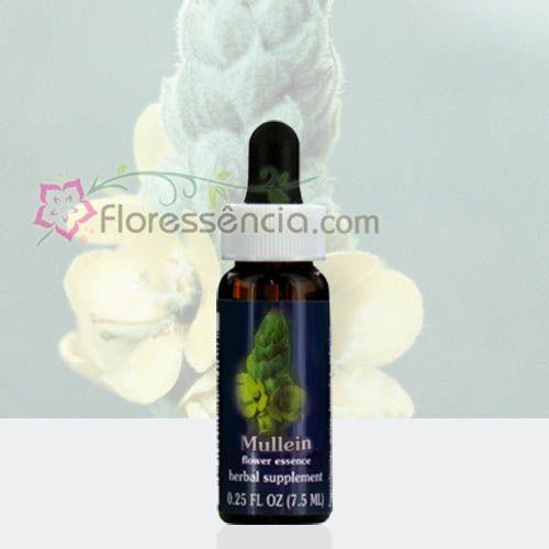 Mullein - 7,5 ml  - Floressência