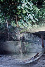 Obaiti - 15 ml  - Floressência