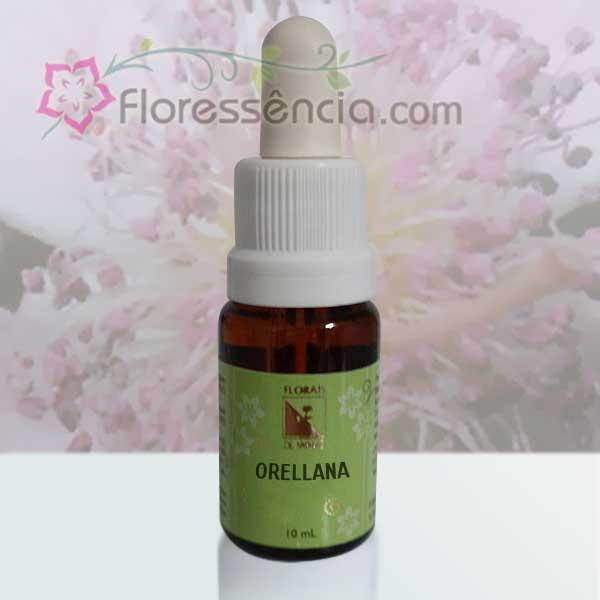 Orellana - 10 ml  - Floressência