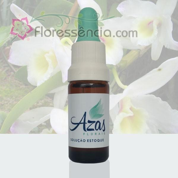 Orquídea Branca - 10 ml  - Floressência