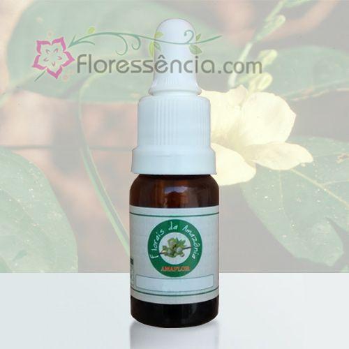 Oxum Amarela - 10 ml  - Floressência