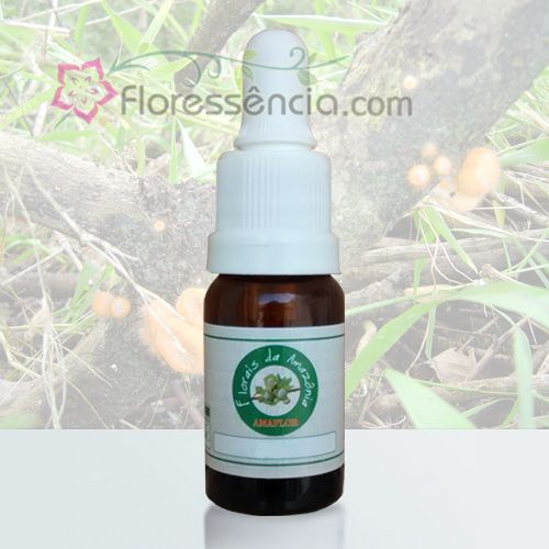 Panteline - 10 ml  - Floressência