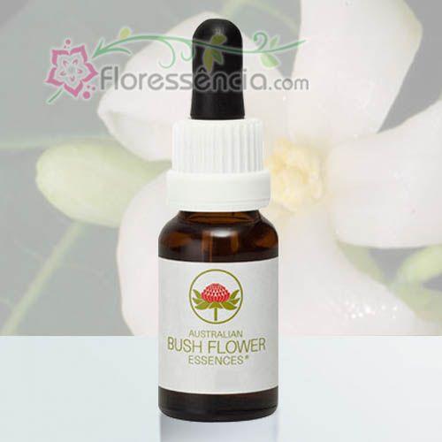 Paw Paw - 15 ml  - Floressência