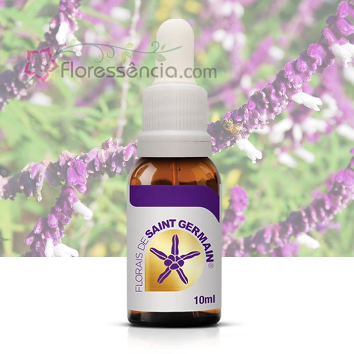 Pectus - 10 ml  - Floressência