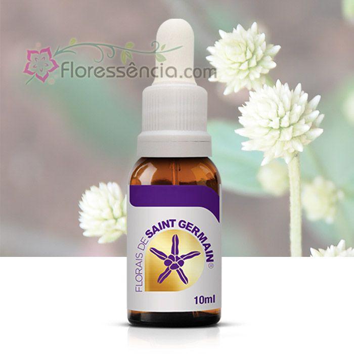 Perpétua - 10 ml  - Floressência