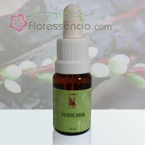 Persicaria - 10 ml  - Floressência