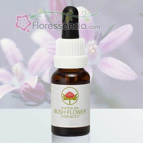 Philotheca - 15 ml  - Floressência