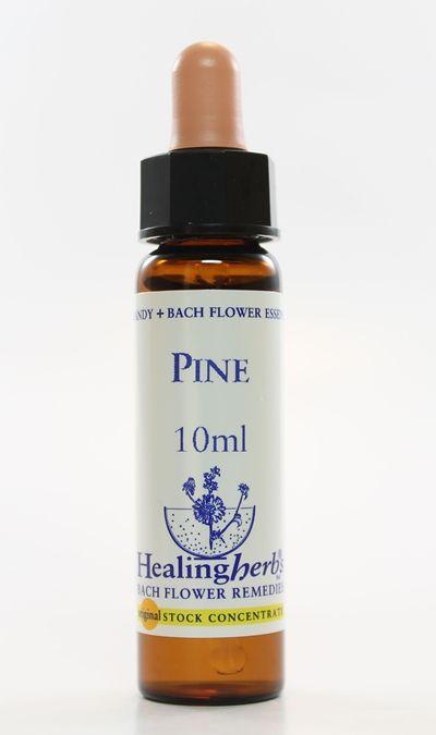 Pine - 10 ml  - Floressência