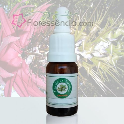 Pingo do Céu - 10 ml  - Floressência