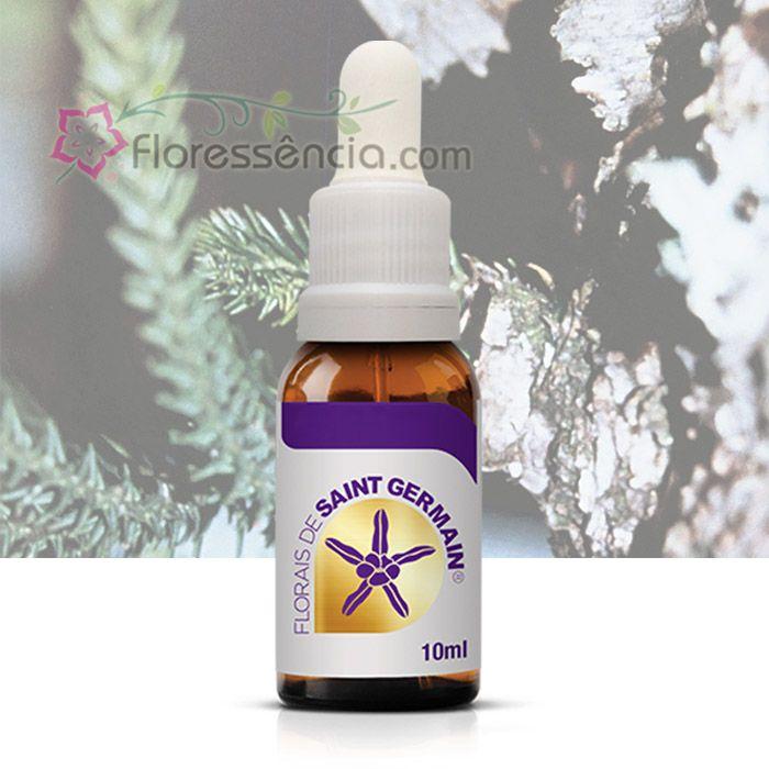 Pinheiro Libertação - 10 ml  - Floressência