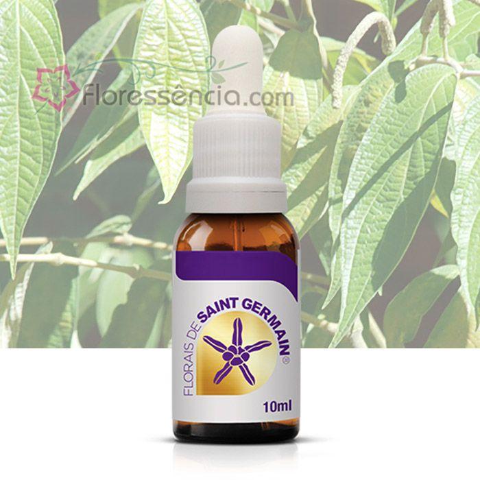 Piper - 10 ml  - Floressência