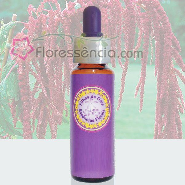 Pluma Japonesa - 10 ml  - Floressência