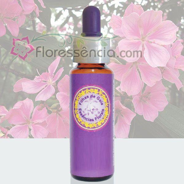 Quaresmeira Rosa - 10 ml  - Floressência