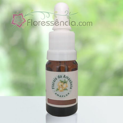 Reconexão - 10 ml  - Floressência