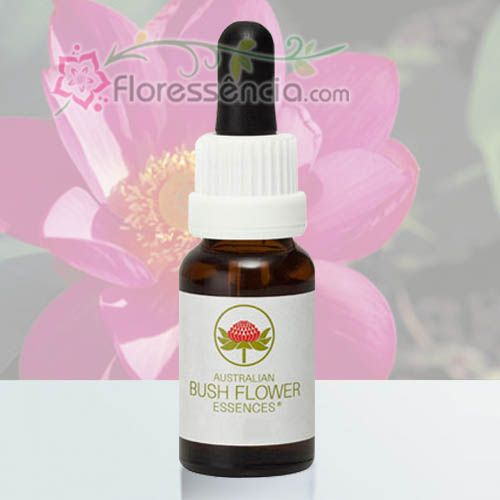 Red Lily - 15 ml  - Floressência