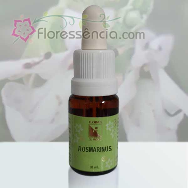 Rosmarinus - 10 ml  - Floressência