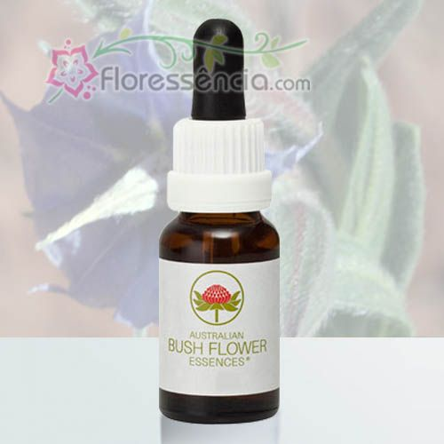 Rough Bluebell - 15 ml - Floressência