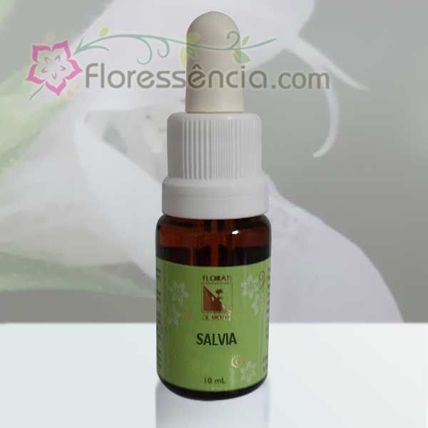Salvia - 10 ml  - Floressência