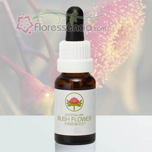 Silver Princess - 15 ml  - Floressência