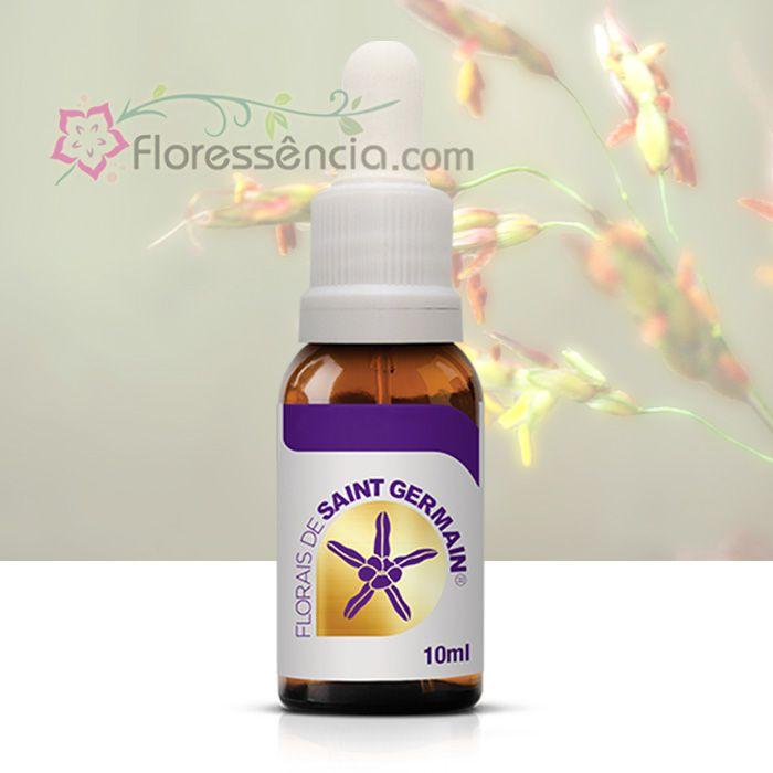Sorgo - 10 ml  - Floressência