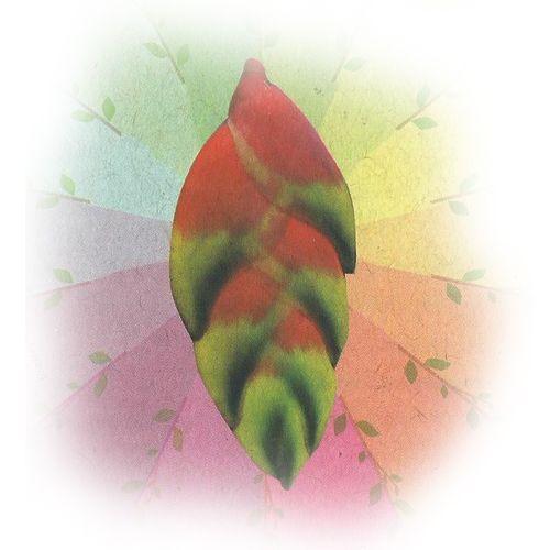 Sororoca Pagé - 10 ml  - Floressência
