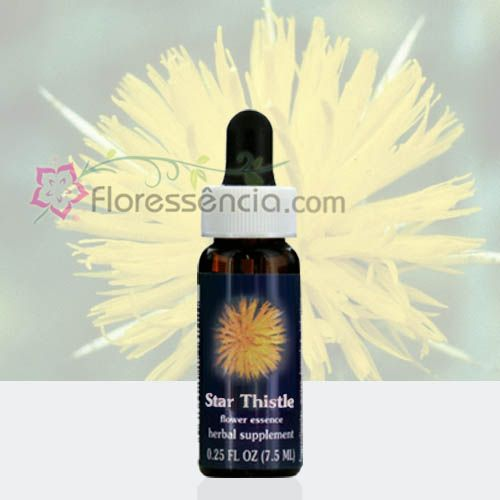 Star Thistle - 7,5 ml  - Floressência