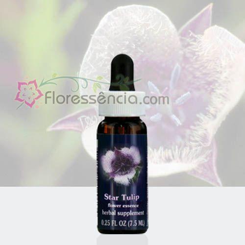 Star Tulip - 7,5 ml  - Floressência
