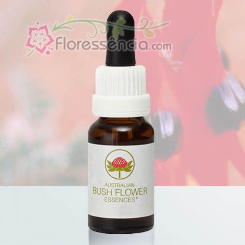 Sturt Desert Pea - 15 ml  - Floressência