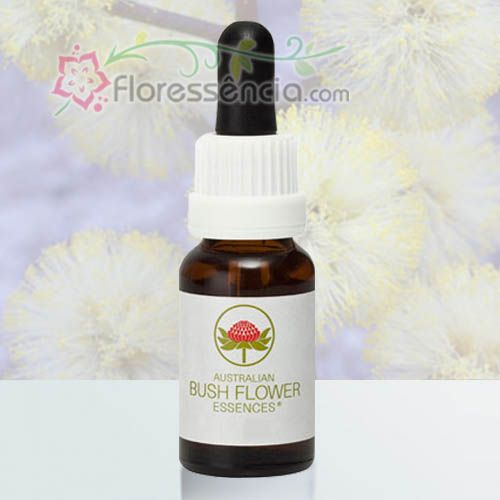Sunshine Wattle - 15 ml  - Floressência