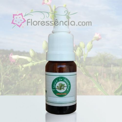 Tabaco - 10 ml  - Floressência