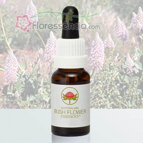Tall Mulla Mulla - 15 ml  - Floressência