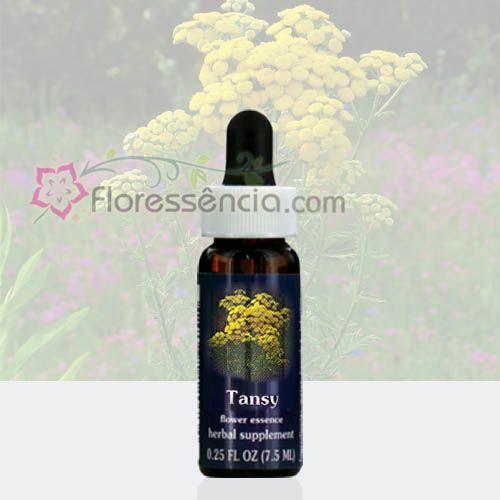 Tansy - 7,5 ml  - Floressência