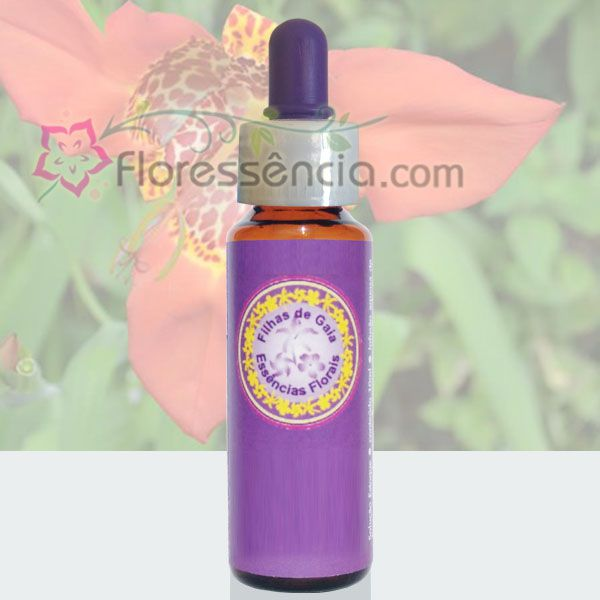 Tigridea - 10 ml  - Floressência