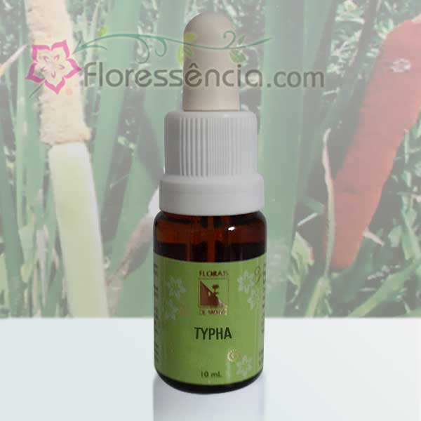 Typha - 10 ml  - Floressência