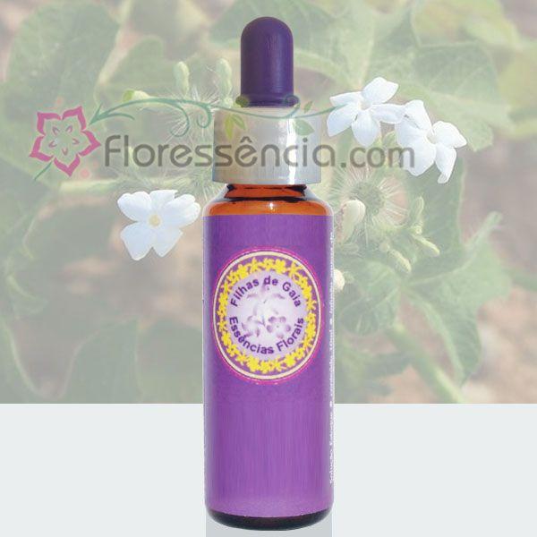 Urtiga do Agreste - 10 ml  - Floressência