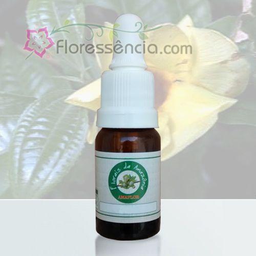Vaso Perfumoso - 10 ml  - Floressência