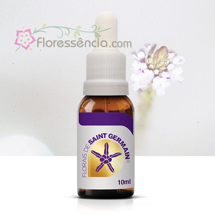Verbena - 10 ml  - Floressência
