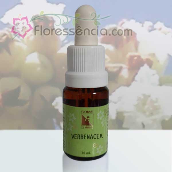 Verbenacea - 10 ml  - Floressência