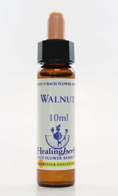 Walnut - 10 ml  - Floressência