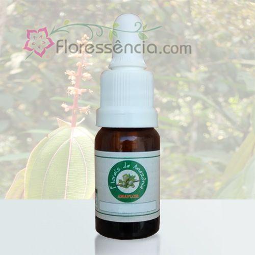 Xangô da Mata - 10 ml  - Floressência