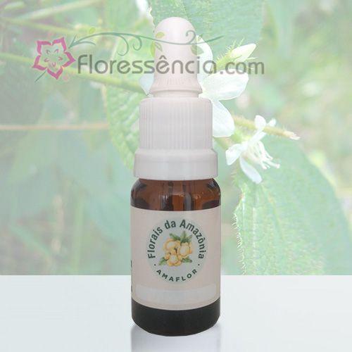 Xangozinho da Mata - 10 ml  - Floressência