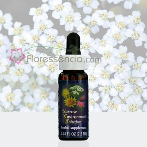 Yarrow Environmental Solution - 7,5 ml  - Floressência